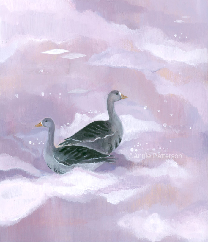 Purple geese