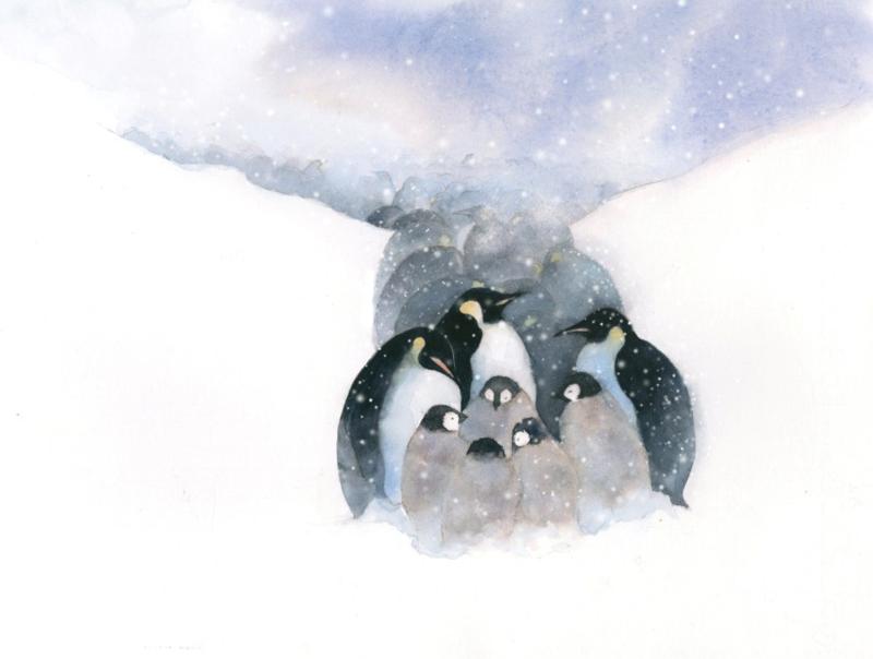 Penguins anniepatterson